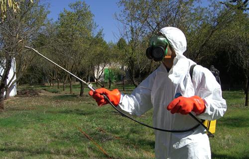 carnet-fitosanitarios